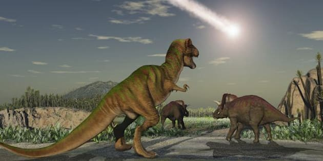 Les empreintes d'un nouveau dinosaure géant découvertes en Afrique (photo d'illustration).