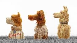 'Isla de perros', un poema de amor al mejor amigo del