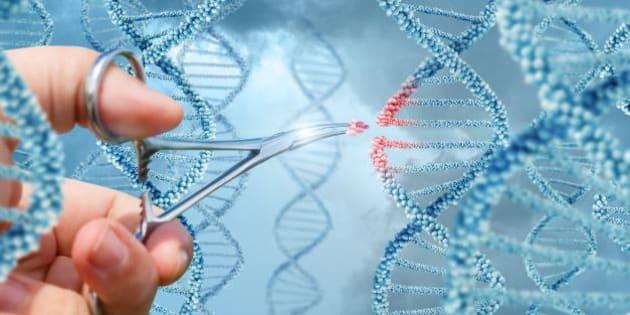 Oubliez la PMA, voici LE débat des États généraux de la bioéthique à surveiller