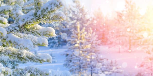 ホワイトクリスマスのイメージ写真