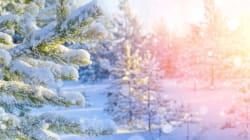 ホワイトクリスマスになるのは、どこの地域?