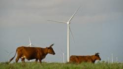 Este país lo está haciendo sorprendentemente bien con las energías