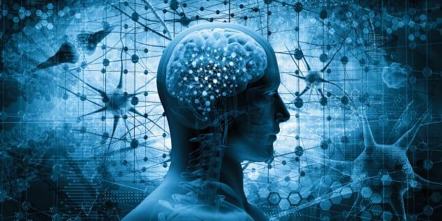A consciência nem tem acesso à maior parte do que está sendo processado em nosso cérebro e é ali, nesse universo desconhecido da nossa identidade, que são feitas nossas escolhas.