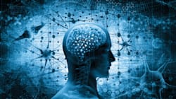 Une injection de cette hormone dope mémoire et capacité