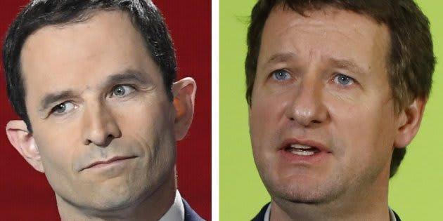 Les électeurs écologistes d'accord pour une alliance Jadot-Hamon-Mélenchon