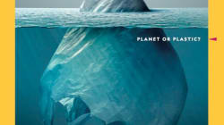 Lo que hemos aprendido sobre medioambiente este