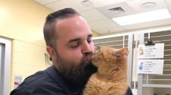 Ce refuge a trouvé la solution idéale pour ce vieux chat qui adore être
