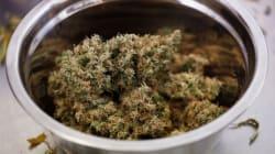 California se pone verde: desde hoy es legal la marihuana