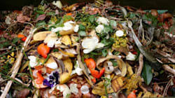 A Microbial Breakthrough Could Make This Mess The Future Of
