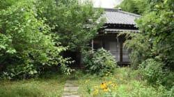 古民家を子どもたちの体験の場として甦らせたい。都心から約1時間、千葉の里山で進む再生プロジェクト