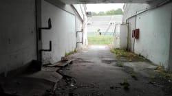Trovato cadavere di un senzatetto dentro lo stadio Flaminio. Insorgono Pd e Fi: