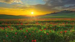 Alle 17.15 arriva la primavera, con un giorno di anticipo. E sarà così fino al