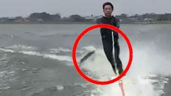 La guerre entre poissons et amateurs de ski nautique fait sa première