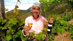 Trasforma un terreno abbandonato in un'azienda vinicola modello, ma viene condannato per aver estirpato le