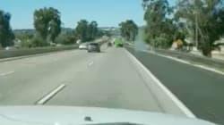 Estos conductores se llevan el susto de su vida: jamás habían visto algo