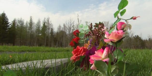 La communauté musulmane de Québec souhaite implanter un cimetière à Saint-Apollinaire, sur un terrain appartenant à l'entreprise Harmonia. (Photo : Radio-Canada)