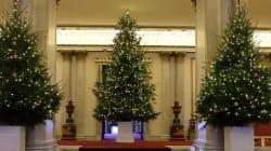 Il Natale si accende a Buckingham Palace (ma quest'anno gli addobbi hanno il tocco della
