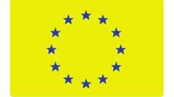 Marine Le Pen brandit un drapeau européen aux couleurs des gilets