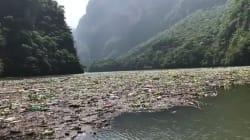 45 mil toneladas de desechos son arrastradas cada año hacia el Cañón del