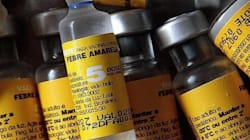 Por que os EUA estão recomendando reforço na vacina contra febre amarela e o Brasil,