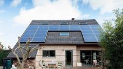 Vivere Green: i consigli per una casa