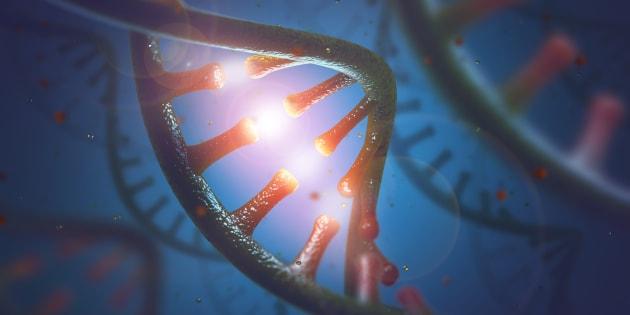 DNA and RNAの3Dイメージ画像