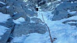 Precipita una cordata sulla Presanella in Trentino: due morti e 7