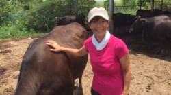 乳がん(ステージ4)から牧場農家への復帰