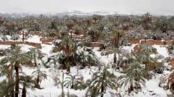 Des chutes de neiges inhabituelles dans le désert