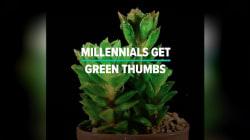 Millennials Heart