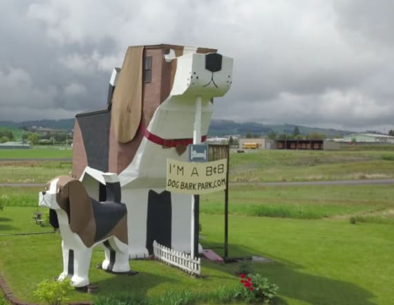 Dream Vacation Homes: Visitors stay inside giant dog