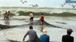 Cierran puerto en Acapulco por onda tropical número