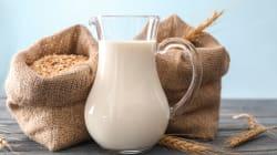 L'heure de gloire du lait d'avoine, alternative au lait