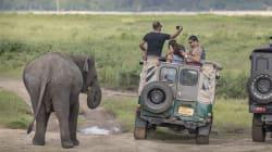 Como o 'boom' da selfie tem impactado o turismo com