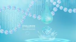 オレフィンを用いるアルキル炭素–アルキル炭素結合の形成