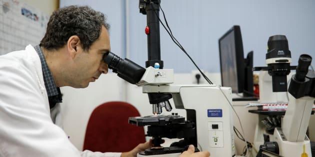 Un sanitario examina unas muestras en un laboratorio, en una imagen de archivo.