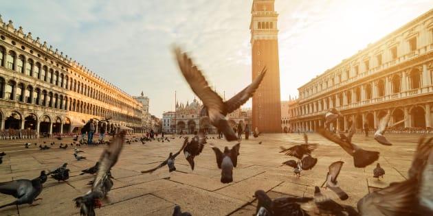 Bimbo di 5 anni in monopattino multato in Piazza San Marco a