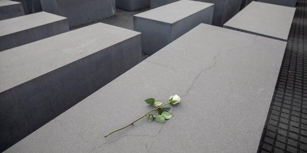 Una rosa blanca depositada sobre uno de los bloques de cemento que conforman el Monumento Conmemorativo del Holocausto en Berlín (Alemania), en la víspera de la celebración en recuerdo de la llamada 'Noche de los Cristales Rotos'.