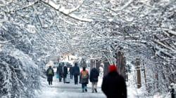 La neige revient ce vendredi, 19 départements en vigilance