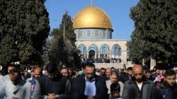 Palestinos buscarán apoyo de Asamblea General de la ONU sobre
