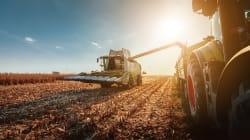 Les producteurs agricoles risquent d'être déçus par le