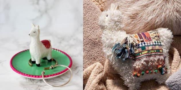 Pourquoi les lamas ont un tel succès dans les magasins de déco et sur Internet.