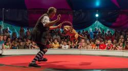 Ce cirque a remplacé lions et éléphants par des chiens sauvés de la