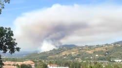 À Castagniers, près de Nice, le plus grave incendie depuis 2003 ne progresse