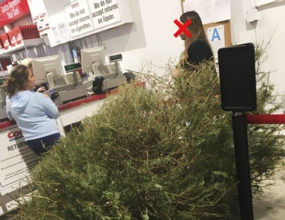 Woman returns dead Christmas tree to Costco