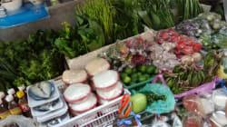 タイのローカル食材で和食チャレンジ!~青パパイヤの巻~