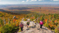 Aujourd'hui, l'accès est gratuit dans les parcs nationaux du