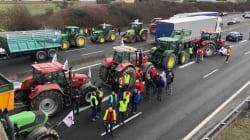 Les blocages par les agriculteurs se sont multipliés en France ce