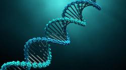 Une anomalie dans l'ADN pourrait résoudre le mystère de