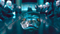«Harry Potter»: Nagini, le serpent de Voldemort, était une femme (et on
